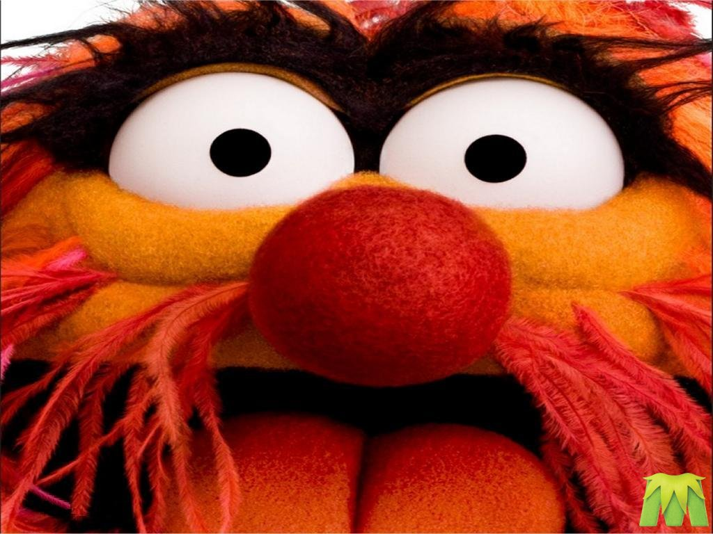 animal muppets wallpaper - photo #20
